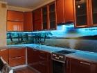 virtuves_paneli_11